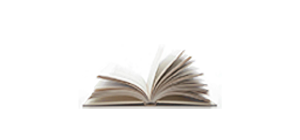 Vincent Ryan Ruggiero Official website  – Author
