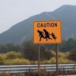 US Border 7053473_s
